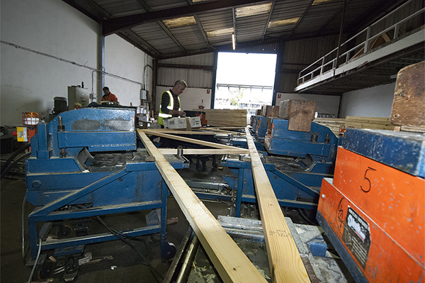 Floor Joists UK