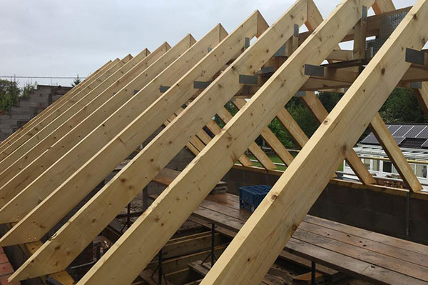 The Quantity of Trusses